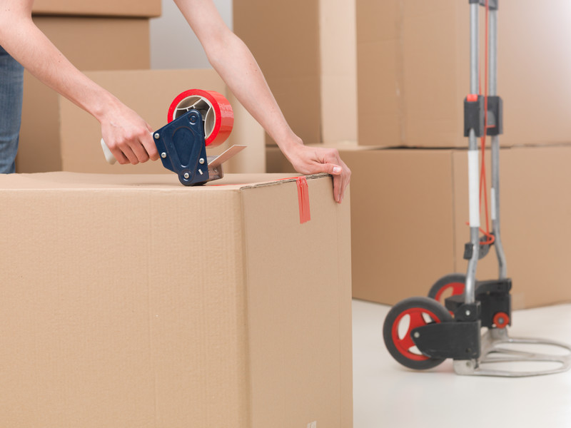 Packers and Movers   Advanatge Moving   Algonquin, IL
