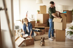 movers, advantage moving and storage - algonquin, IL